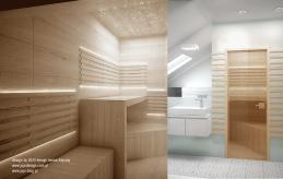 23 projekt wnętrza sauny
